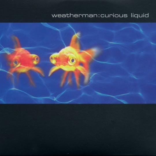 Curious Liquid
