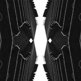 Form Function (Ten Ton Atom Remix)