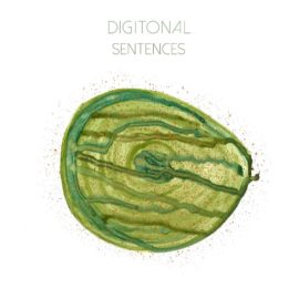 Sentences | New Digitonal Single + Video